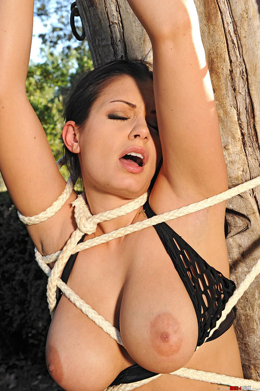 Busty Babes In Bondage