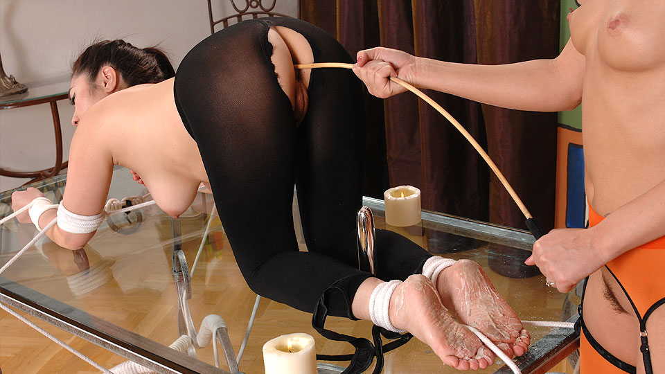 Candle wax chastisement [Part2]