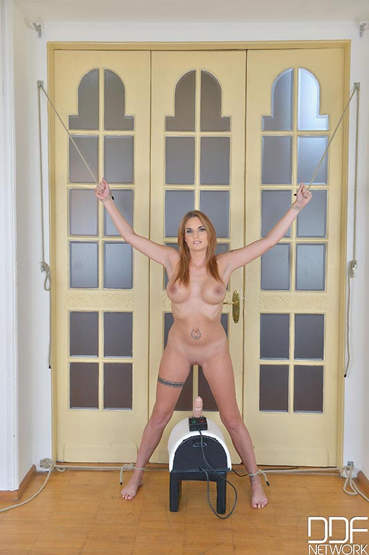 Riding The Saddle - Sex Toy Bangs Submissive's Asshole #1